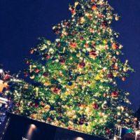 ホワイトクリスマス!!