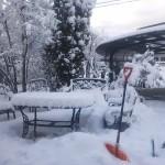 大雪で日程変更です!