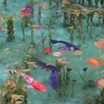 岐阜県、モネの池・・・ご存知ですか?